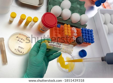 Scientific sampling of eggs in poor condition, analysis of avian influenza in humans, conceptual image Royalty-Free Stock Photo #1851439318