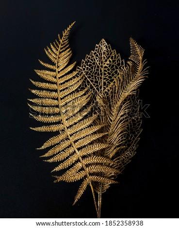 Golden leaf. Golden leaves on black background               Royalty-Free Stock Photo #1852358938