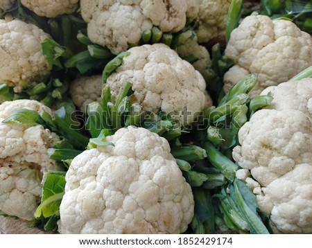 Group of fresh cauliflowers with green leaves in the vegetable market. Close up of fresh raw cauliflower bunches at a vegetable market. Fresh cauliflowers stall on the table #1852429174