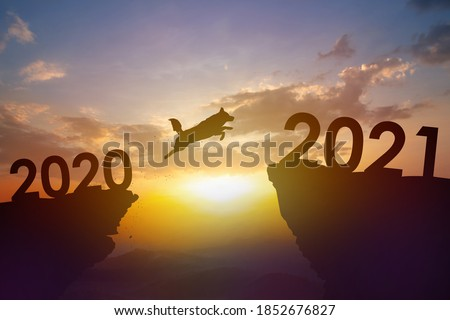 Silhouette Pet, Dog jump from 2020 to 2021 year with sunset background. Pet shop new year concept. #1852676827