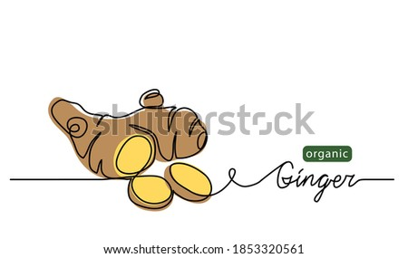 Ginger vector illustration. One line drawing art illustration with lettering organic ginger. Royalty-Free Stock Photo #1853320561
