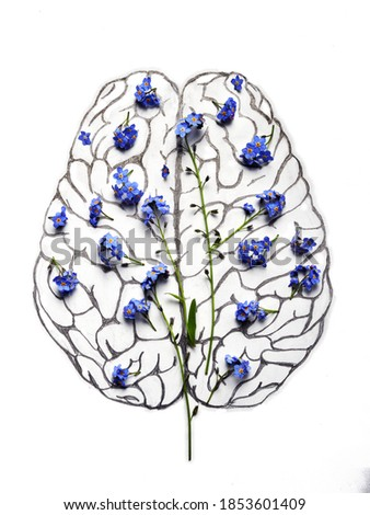 Human brain neocortex pencil drawing with blue flowers.
