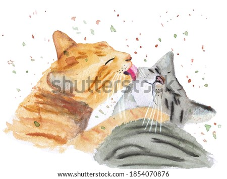 Cute cat social grooming . Hand paint watercolor illustration isolated on white background.