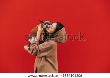 Beautiful woman holding cute biewer terrier dog in her arms and kissing, pet looking at camera, isolated on red background. Lady stands with a dog on a background of a red wall. Royalty-Free Stock Photo #1854101206