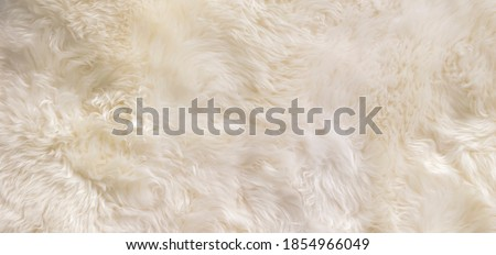 White, Beige wool texture background. Natural fluffy fur sheep wool skin texture. Apart of luxury brown long wool coat, beige color carpet  for background and wallpaper, selective focus