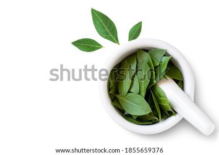 Herbal Henna leaves in white mortar with pestle on white background. Natural product for organic hair colouring. Top view. Flat lay. Copy space.