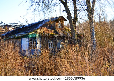 Lonely old abandoned wooden house in the woods #1855789936