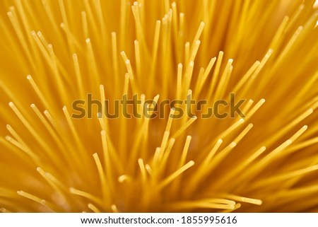 A macro photograph of several unboiled spaghetti #1855995616