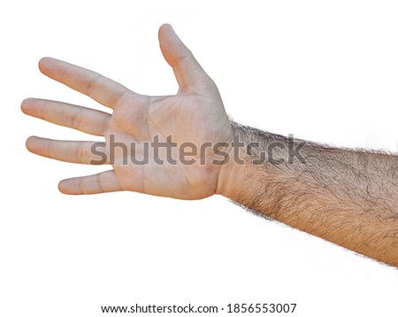 hairy male hand open palm