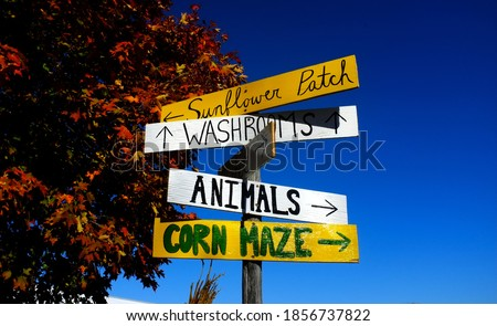 Farm direction signs in the Fall