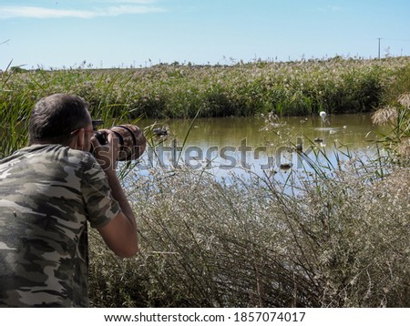 professional photographer dressed in camouflage hidden among the vegetation working, photographing a flamingo in a lagoon