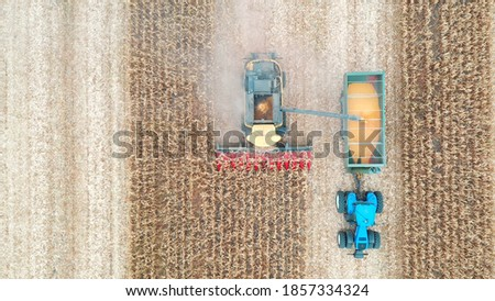 Aerial shot of combine loading off corn grains into tractor trailer. View from high to agricultural machines working in farmland during harvesting. Farming concept.