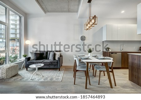 Canadian style luxury furnished staged brand new apartment in the apartment building with the exterior views Royalty-Free Stock Photo #1857464893