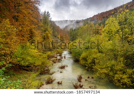 Irati is one of the largest forests of beech and fir trees in Europe. There are two ways to enter the Irati Forest: on the western side from Orbaizeta and on the eastern side from Otsagabia. Royalty-Free Stock Photo #1857497134