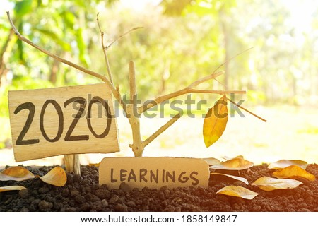 A tree branch with a single remaining last leaf hanging beside a 2020 Learning sign at sunset. Life lessons and learnings from the year 2020 concept. Royalty-Free Stock Photo #1858149847