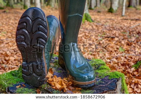A lying and a standing rubber boot in the autumn forest. For hunters, hikers and everyone who likes to be in nature, rubber boots are the right shoes, waterproof, robust and non-slip soles. Royalty-Free Stock Photo #1858672906