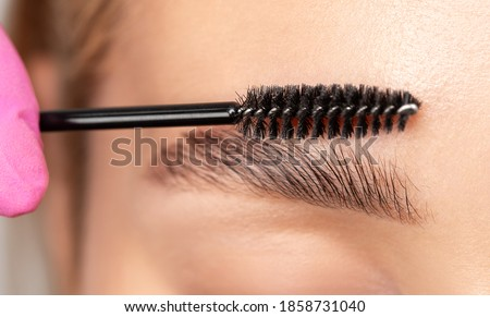 Makeup artist combs eyebrows with a brush after dyeing in a beauty salon. Professional makeup and cosmetology skin care. Royalty-Free Stock Photo #1858731040