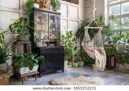 Cozy rope swing in living room with green houseplants in flower pot and black vintage chest of drawers. Comfort room with furniture in house with modern interior design Royalty-Free Stock Photo #1859252215