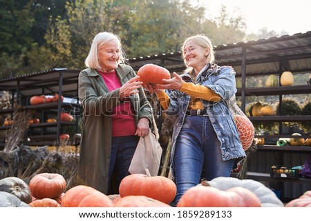 We chose the best! Lovely mother and daughter holding big orange pumpkin while choosing it at the market. Shopping concept. Stock photo