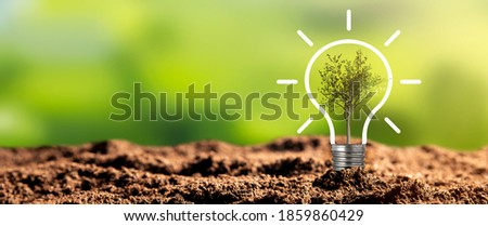 Light bulb with growing tree. Ecological friendly and sustainable environment