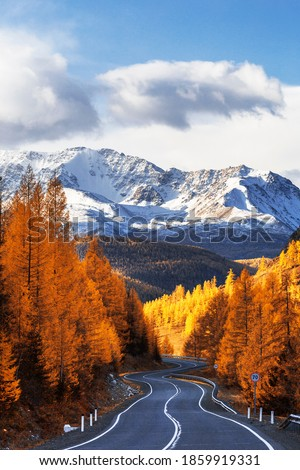 View of the Chui tract, autumn taiga, snow-capped mountain peaks. Altai Republic, Russia Royalty-Free Stock Photo #1859919331
