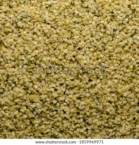 Hulled hemp seeds. Square shaped background and surface of raw and edible hempseeds.  Cannabis sativa, high in protein and a great source of iron. Macro, food photo, top view, from above. Backdrop.