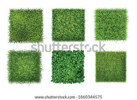 Ground cover plants background texture 6 realistic square icons set with green grass clover leaves vector illustration Royalty-Free Stock Photo #1860344575