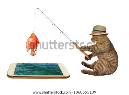 A cat in a straw hat is fishing from a phone. He caught a fish. White background. Isolated.