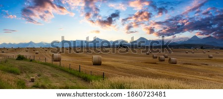 Panoramic View of Bales of Hay in a farm field. Dramatic Sunrise Summer Sky. Taken near Pincher Creek, Alberta, Canada. Royalty-Free Stock Photo #1860723481