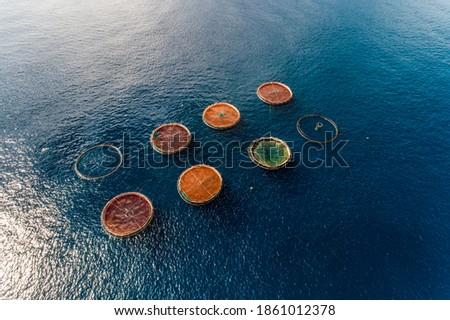 Aerial top view of the rings of fish aqua farm in the sea of madeira Portugal Europe Royalty-Free Stock Photo #1861012378