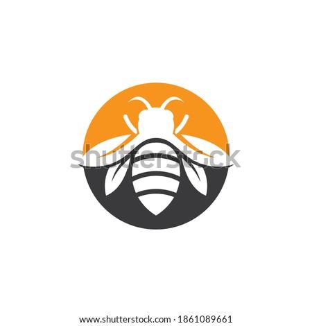 Bee logo images illustration design