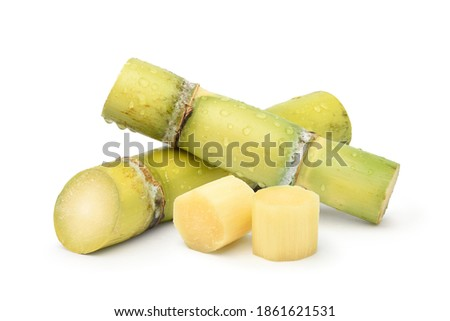 Fresh sugar cane with water droplets and sliced isolated on white background. Royalty-Free Stock Photo #1861621531