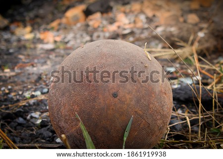 Old cracked and weathered basketball ball in burnt ground of abandoned gardens