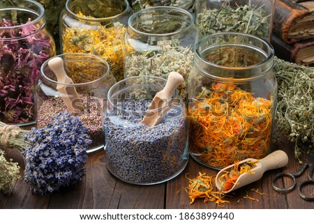 Glass jars of dry lavender and calendula flowers. Jars of dry medicinal herbs for making herbal tea, bunch of dry lavender on table. Alternative medicine. Royalty-Free Stock Photo #1863899440