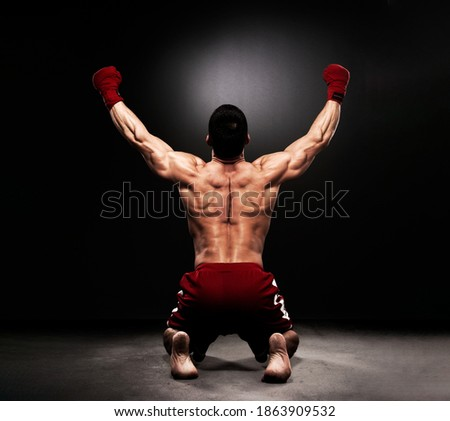 MMA Fighter On the Floor Celebrating Victory Royalty-Free Stock Photo #1863909532
