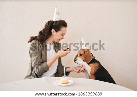 My birthday boy. Happy caucasian woman with a festive mood asking her spotted dog for a paw while sitting at the holiday cap at the kitchen