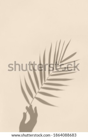 Soft shadows of hand holding a palm leaf on textured concrete background. Abstract minimal concept photo. Royalty-Free Stock Photo #1864088683