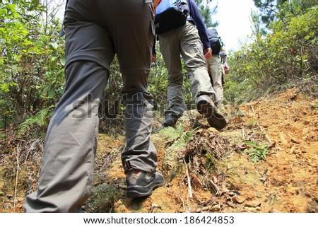 hiking  #186424853