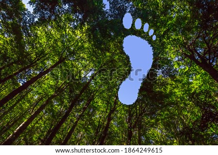 Hole in the Shape of a Footprint Symbolizing a Carbon Footprint