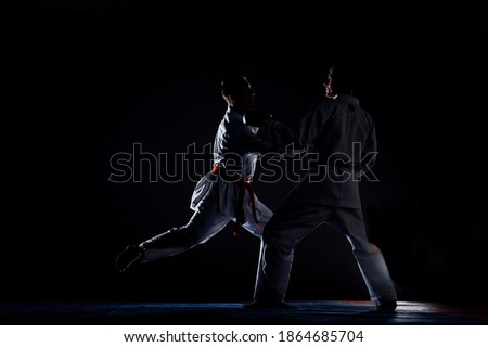 An athlete with a red belt and in karategi performs a formal karate exercise Royalty-Free Stock Photo #1864685704