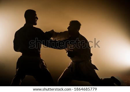 An athlete with a red belt and in karategi performs a formal karate exercise Royalty-Free Stock Photo #1864685779