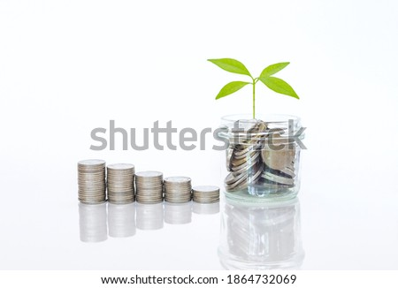 Coin in clear  cup with young green plant and stack of coin on white background, banking and financial concept, successful and growing business