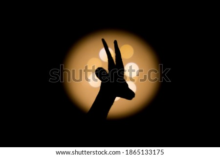gazelle head shadowed with bright light in background