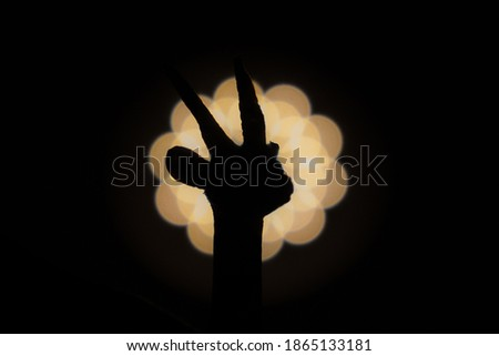 gazelle head photographed with bright light in background and with short shutter speed with clear shadow