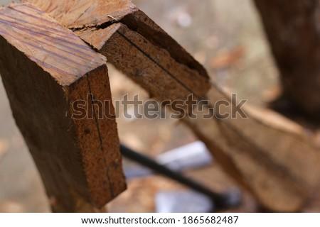 lute craft instrument. Making traditional Batak musical instruments, Hasapi musical instruments #1865682487