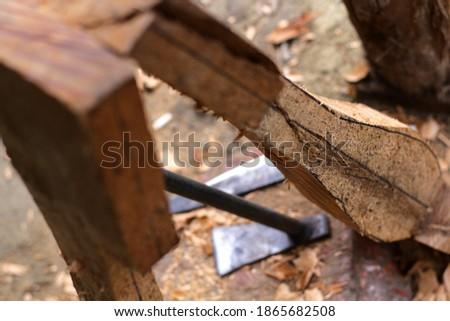 lute craft instrument. Making traditional Batak musical instruments, Hasapi musical instruments #1865682508