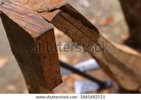 lute craft instrument. Making traditional Batak musical instruments, Hasapi musical instruments #1865682511