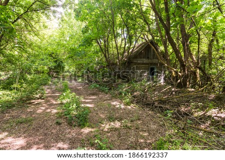 Street in abandoned village Dibrova, post apocalyptic landscape, summer season in Chernobyl exclusion zone, Ukraine Royalty-Free Stock Photo #1866192337