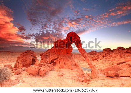 sunrise of natural Rock Formation In The Shape Of An Elephant, Valley of Fire State Park, Nevada, USA