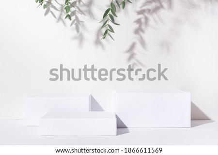 White background for cosmetic products. Rectangular podiums with the shadow of the branches of the eucalyptus. Royalty-Free Stock Photo #1866611569